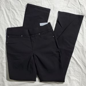 NWT Skye's The Limit Boot Cut Pant